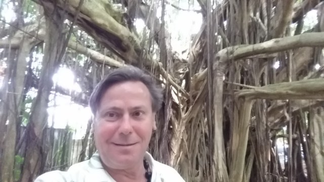 Steve Davis in May 2014, Kauai, Banyan Tree.