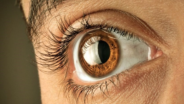What Do the Names Mean? | Optometry Vs Ophthalmology: How Do They Differ?