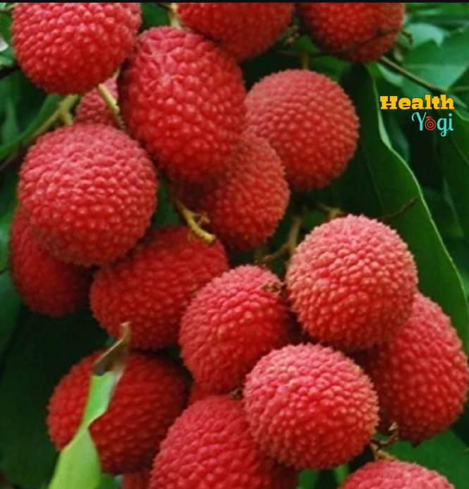 Disadvantages of Lychee Fruit | Lichi Super Fruit Side Effects
