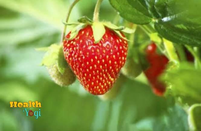 Strawberry for skin whitening