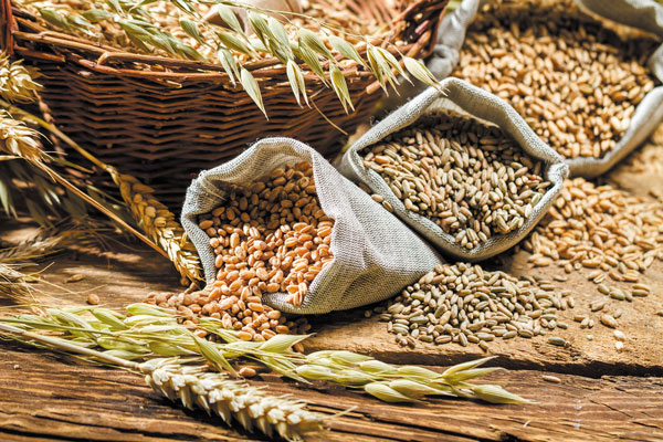 Image result for whole grains