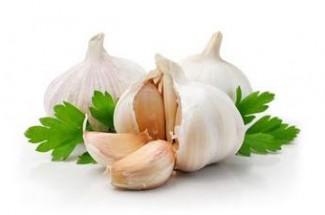 garlic medicinal use