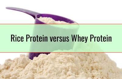 Rice Protein versus Whey Protein