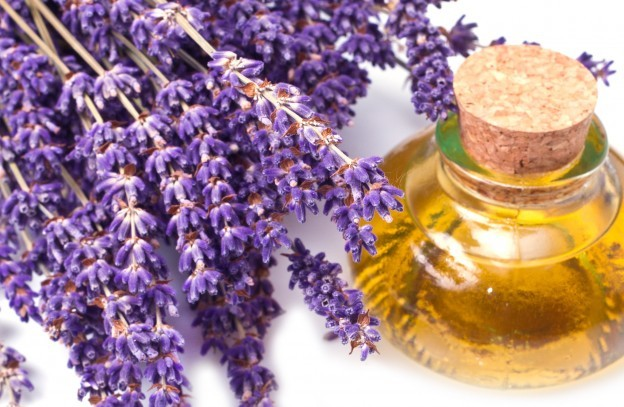 Lavender Oil For Burns