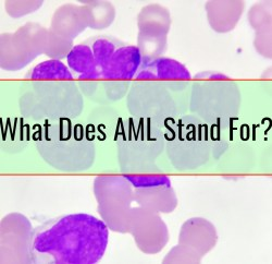 What Does AML Stand For