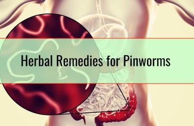 Herbal Remedies for Pinworms
