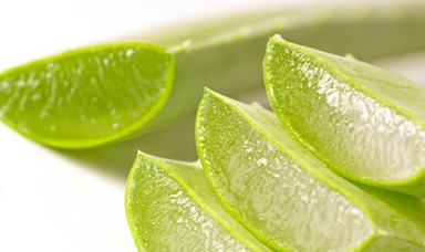 Aloe Vera for Puffy Eyes