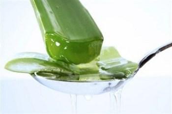 Aloe Vera gel for keloids