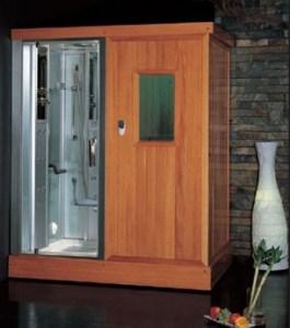 Platinum Steam Shower & Sauna