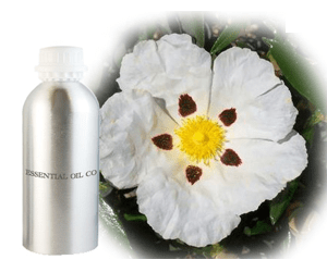 Health benefits of Labdanum Essential Oil
