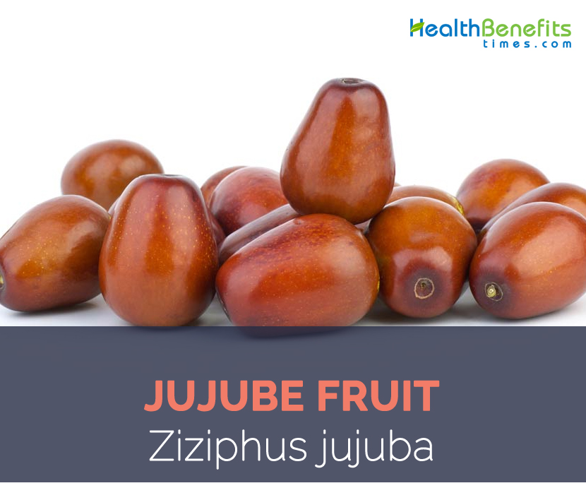Jujube-fruit-facts-and-health-benefits.jpg
