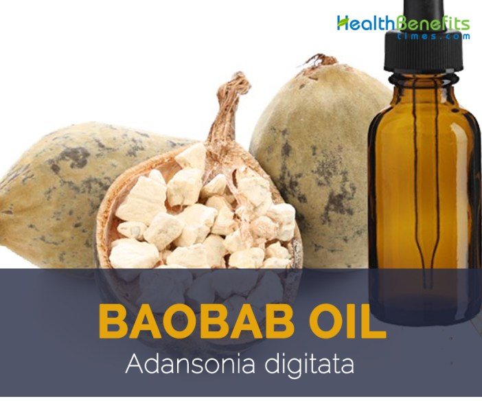 Baobab oil facts and benefits