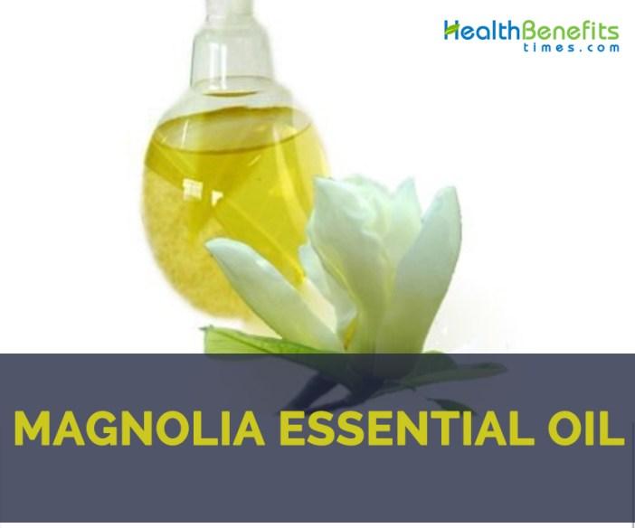 Health benefits of Magnolia essential oil