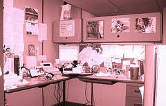 medical transcriptionist salary data