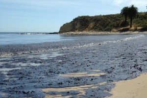 Refugio oil spill photo by Lara Cooper/Noozhawk
