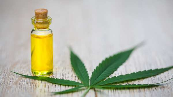 First CBD oil to be approved by the European Medicines Agency