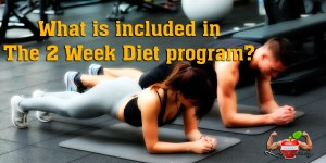 what is included in the 2 week diet program