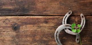 health benefits of horseshoes