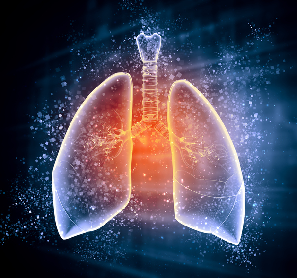 Top 10 Ways To Keep Your Lungs Healthy Health Fitness Revolution