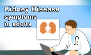 Kidney disease symptoms in adults