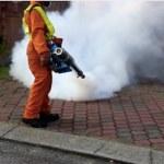 Preventing the Zika Virus