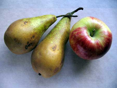 Apples and pears - High Fructose/Glucose Ratio