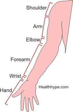 """arm_hand_pain """"width ="""" 250 """"height ="""" 384 """"srcset ="""" https: // www.healthhype.com/wp-content/uploads/arm_hand_pain.jpg 250w, http://www.healthhype.com/wp-content/uploads/arm_hand_pain-195x300.jpg 195w """"tamaños ="""" (ancho máximo: 250px) 100vw, 250px """"/> </div data-recalc-dims="""