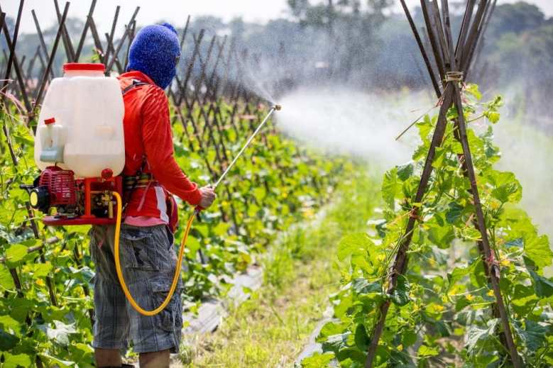 Pesticide poisoning due to spraying in fields. Copyright: <a href='https://www.123rf.com/profile_ittipol'>ittipol / 123RF Stock Photo</a>