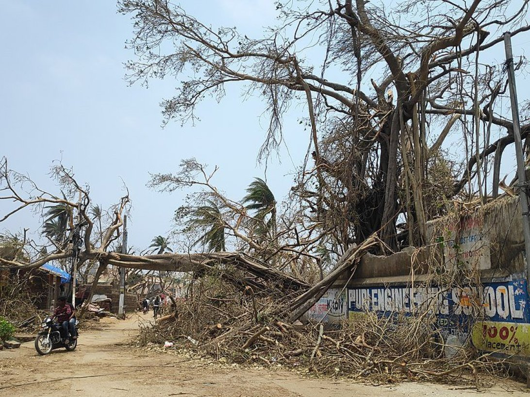 Cyclone Fani destruction. Via Wikimedia Commons.