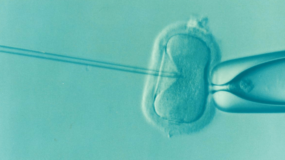 IVF treatment allows a woman to give birth – at age 75