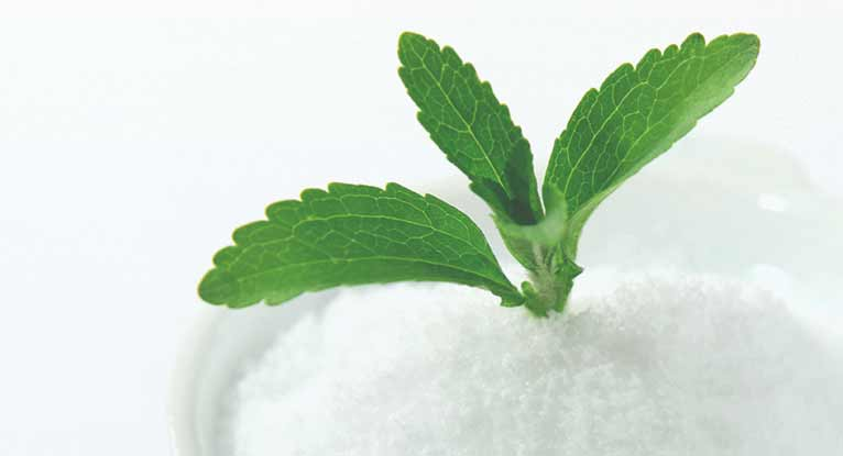 Image result for stevia