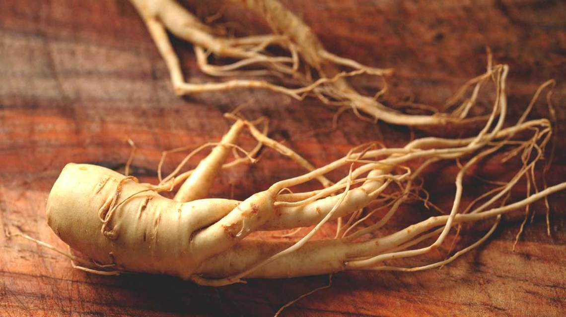 Image Result For What Is Korean Red Ginseng Used For