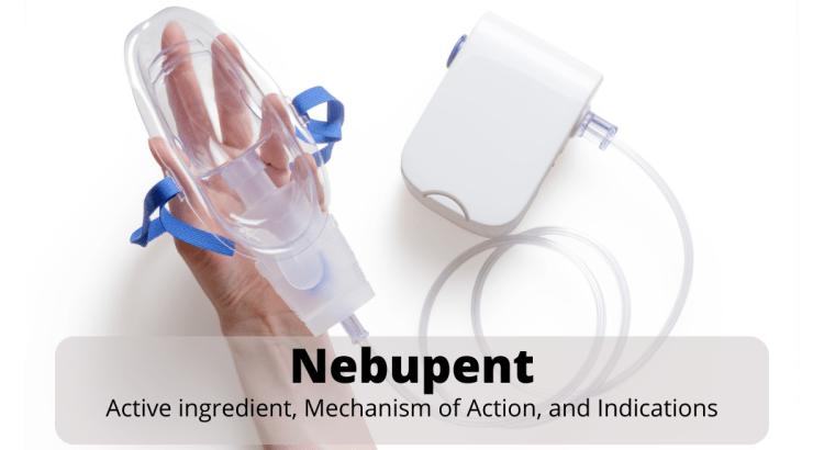 Nebupent