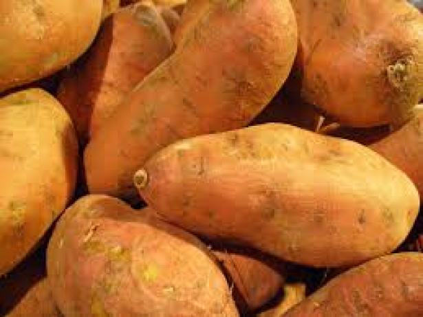 sweet potato Sweet Potato nutrition