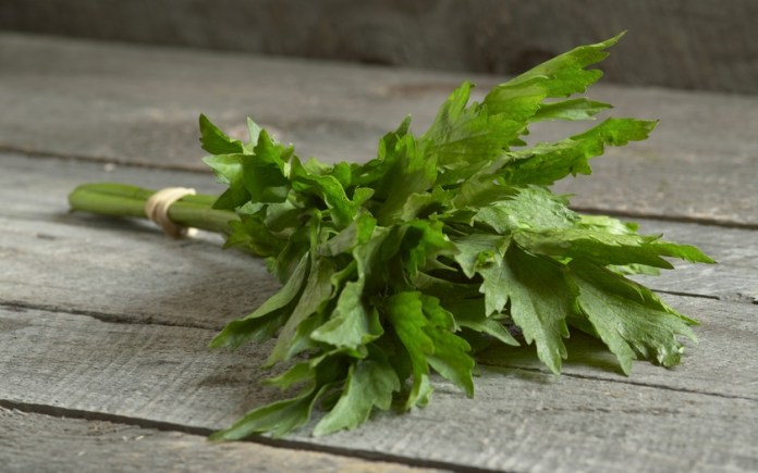 Benefits Of Lovage