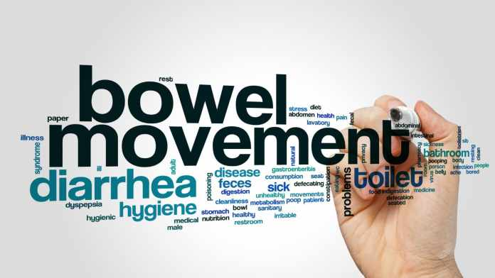foods for good bowel movement