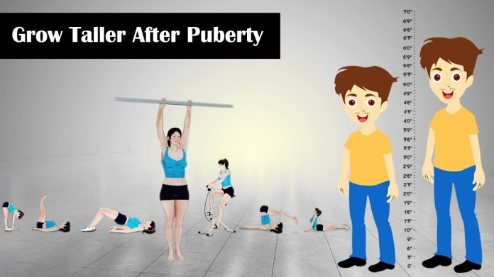 how to grow taller after puberty