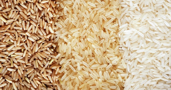Brown Rice or White Rice