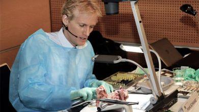 Prof. Frank Schwarz, Düsseldorf, zeigte Nahttechniken bei einer Lappen-OP.