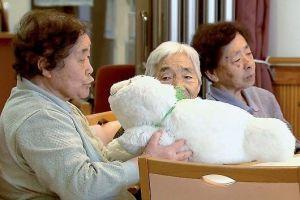 """In Japan wird der emotionale Roboter """"Paro"""" bislang vorwiegend zur Unterhaltung und weniger zur Therapie eingesetzt. Foto: Matthias Kind"""