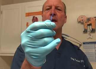 YouTube-Influencer für Tiermedizin: Greg Martinez DVM gehört zu den Top-Influencern für Tiermedizin auf YouTube. Ermittelt von HitchOn für Health Relations