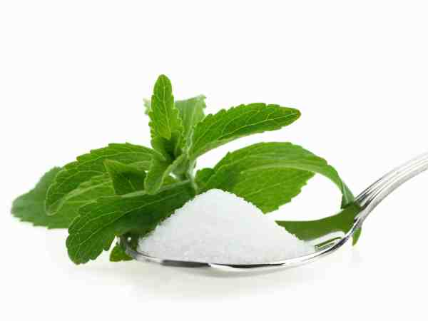 15210071 – fresh stevia rebaudiana and sugar in a spoon