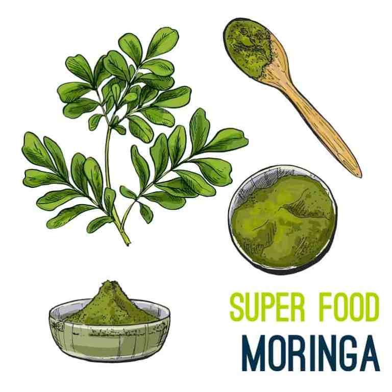moringa-superfood