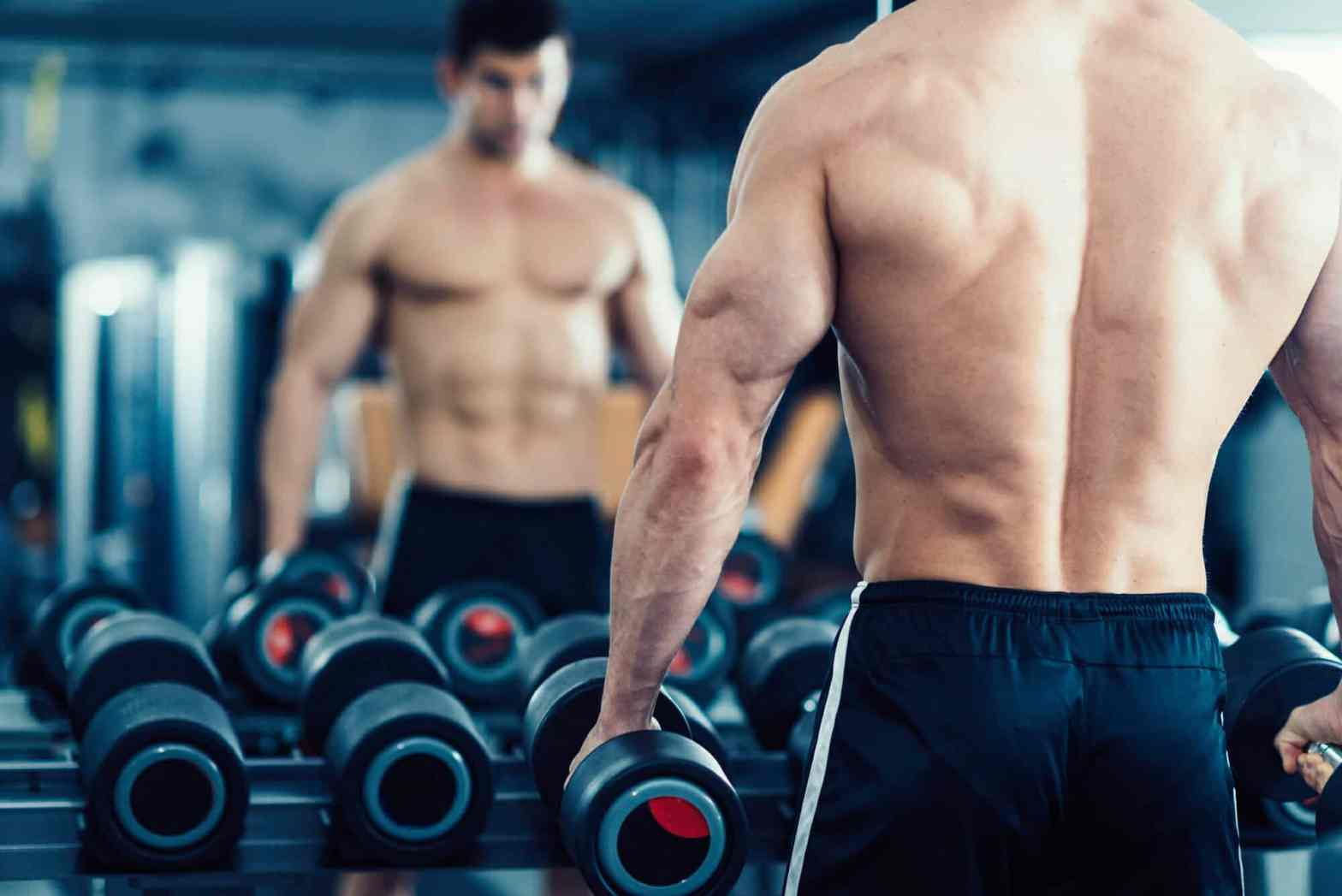 What Are The Safest Muscle Building Supplements