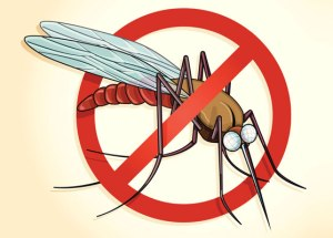 The Fight to Stop Malaria and Its Problems