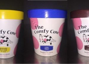 Possible E. Coli Contamination Makes Comfy Cow Ice Cream To Recall Pints