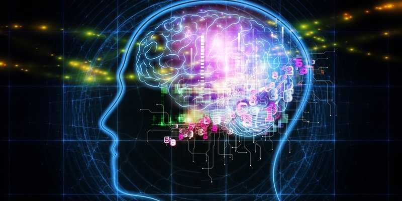Chronic Pain Can Be Treated By Remodeling Brain Circuits, Study Says