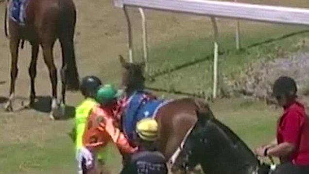 Video Of Jockey Hitting His Horse Goes Viral