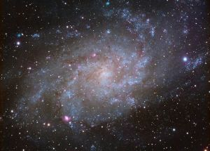 Analyzing the Properties of 1,600 Distant Galaxies Unveils Unprecedented Details