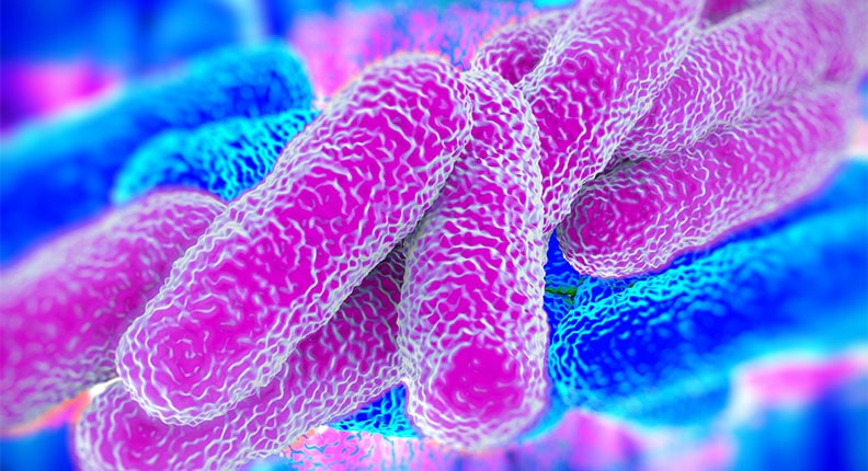Insufficient Chlorine Level Provokes Lethal Legionella Epidemic